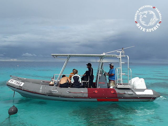 Dive Spirit Fakarava - CEDIP/ANMP Level1 - (2 Days)