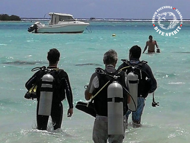 Dive Spirit Fakarava - SSI Open Water Diver - (3 Jours)