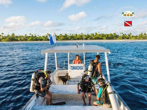 Tetamanu Diving - Discovery dives