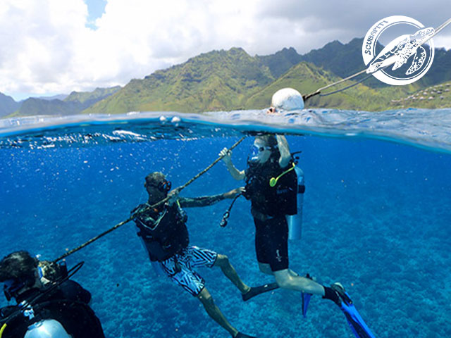 Scubapiti Moorea - Refresh dives