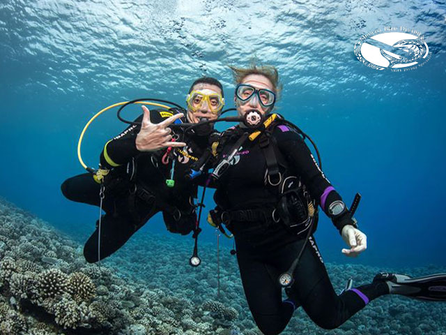 Moorea Blue Diving - Discovery dives - honeymoon, 2 persons
