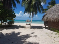 Tikehau Village - Guest House | Lodging | eDivingPass