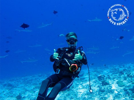 Dive Spirit Fakarava - Fun Dives - North Pass | Fakarava | eDivingPass