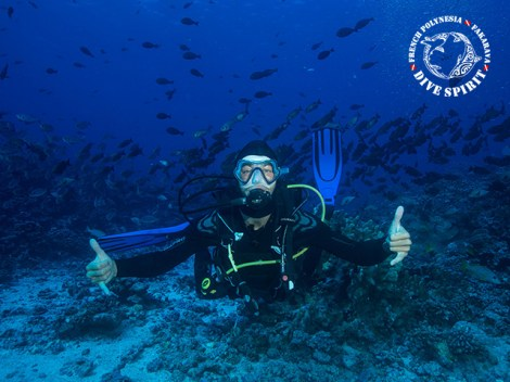 Dive Spirit Fakarava - PRIVATE Fun Dives - 1-2 persons | Exploration Dives | eDivingPass