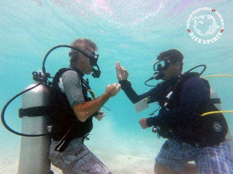 Dive Spirit Fakarava - CEDIP/ANMP Level1 - (2 Days) | Diving Courses | eDivingPass