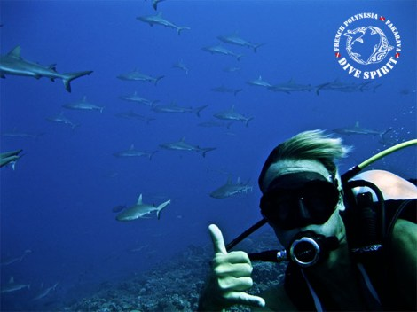 Dive Spirit Fakarava - Fun Dives - Diving Day Trip South Pass | Exploration Dives | eDivingPass