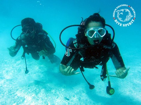 Dive Spirit Fakarava - Discovery Dives - 2 persons | Diving Services | eDivingPass