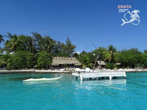 Enata Fakarava Diving - Diving & Lodging - 2-4 persons | Permanent Combos with Lodging | eDivingPass