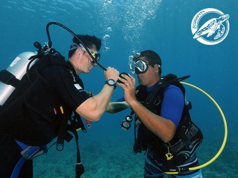 Scubapiti Moorea - CEDIP/ANMP Level1 - (3 Days) | ANMP/CEDIP Certifications | eDivingPass