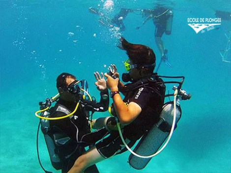 Ecole Plongee Tahiti - Discovery dives - & SSI Open Water Diver (4 Days) | Introductory Dives | eDivingPass