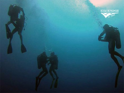 Ecole Plongee Tahiti - Discovery dives - & CEDIP/ANMP Level1 (4 Days) | ANMP/CEDIP Certifications | eDivingPass