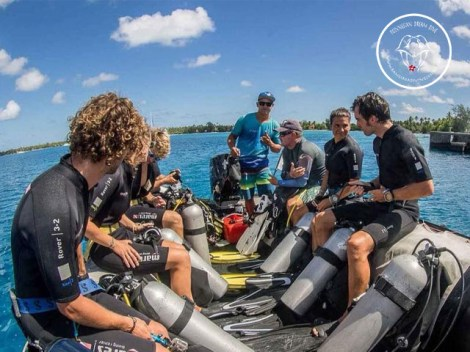 Rangiroa Diving Center - FFESSM/CMAS Level1 - (3 Days) | FFESSM/CMAS Certifications | eDivingPass