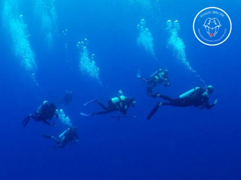 Rangiroa Diving Center - SDI Drift Diving - (1 Day) | SDI Specialties | eDivingPass