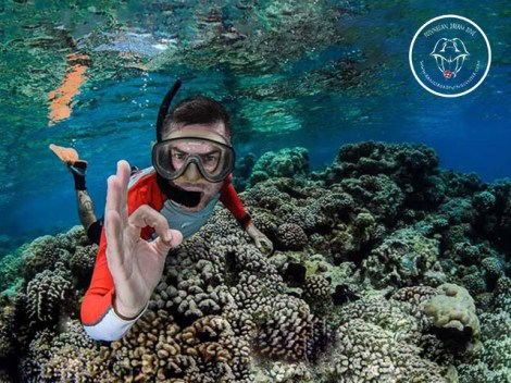 Rangiroa Diving Center - Snorkeling | Snorkeling in Excursions | eDivingPass