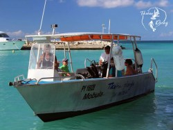 Tikehau Diving - CEDIP/ANMP Niveau1 - (3 Jours) | ANMP/CEDIP Certifications | eDivingPass