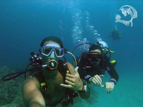 Marquises Diving - Fun Dives | Fun Dives | eDivingPass