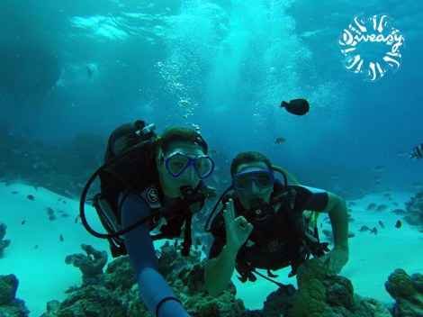 Diveasy Bora-Bora - PADI Open Water Diver - (3 Days) | Diving Courses | eDivingPass