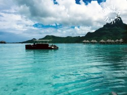 Diveasy Bora-Bora - PRIVATE Fun dives (Manatea) - 1-2 persons | Fun Dives - Private | eDivingPass