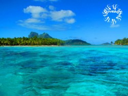 Diveasy Bora-Bora - PADI Advanced Open Water Diver - (3 Days) | PADI Certifications | eDivingPass