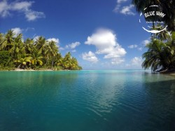 Blue Way Manihi & Lodge - 12 dives & 7 nights - 2 persons | Permanent Combos with Lodging | eDivingPass