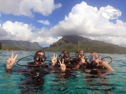 Moorea Blue Diving - Discovery dives - family, 4 persons | Discovery Dives+ | eDivingPass