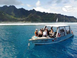 Moorea Blue Diving - Discovery dives | Discovery Dives | eDivingPass