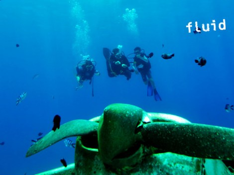 Fluid Tahiti - FFESSM/CMAS Level3 - (5 Days) | FFESSM/CMAS | eDivingPass