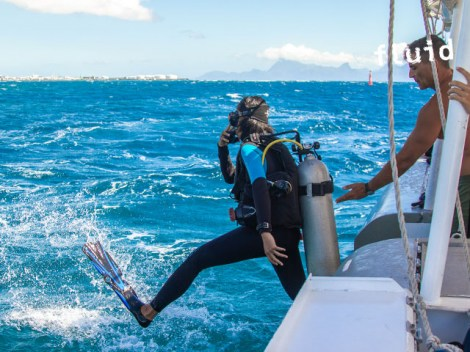 Fluid Tahiti - SSI Open Water Diver - (5 Days) | SSI Certifications | eDivingPass