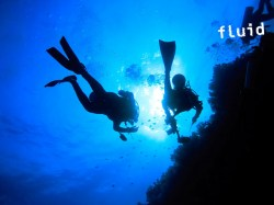 Fluid Tahiti - SSI Diver Stress & Rescue (RD) - (2 Jours) | Specialties | eDivingPass