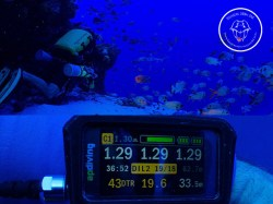 Rangiroa Diving Center - TDI Deco Procedures - (3 Days) | Tek Courses | eDivingPass