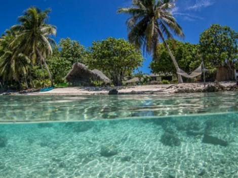 Le Coconut Lodge - Pension | Rangiroa | eDivingPass