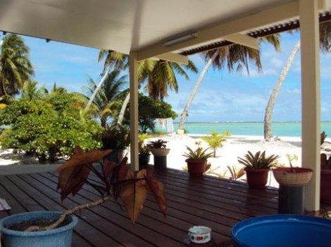 Pension Coconut Beach - Guest House | Tikehau | eDivingPass