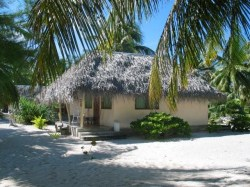 Pension Hotu - Guest House | Lodging | eDivingPass